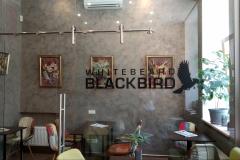 Whitebeard blackbird enteriör